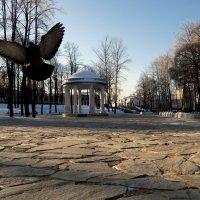 Торможение закрылками :: Валерий Чепкасов