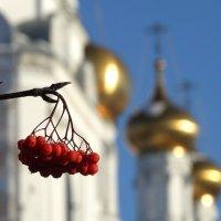 Красненького на Рождество :: Валерий Чепкасов