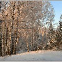Зимний кордон :: Olenka