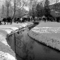 Ручей в Саржином яру. :: Ирина Сивовол