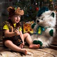 Медведи :: Сергей Степанов