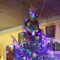 Рождественская  ёлка :: Игорь Смолин
