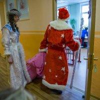 Посмотри в дверную щёлку и увидишь нашу Ёлку! :: Ирина Данилова