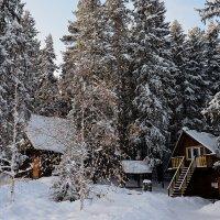 Летний домик в январе :: Владимир Петухов