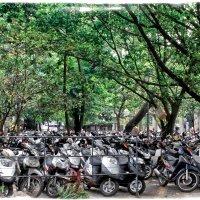Парковка по Вьетнамски :: Alexander Demetev