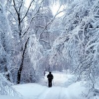 Путь в снежное царство :: Николай Белавин