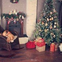 В ожидании Рождества :: Тата Казакова