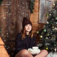 Рождественское утро) :: Elena Kovach