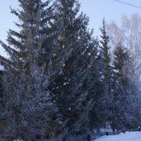 Вот моя деревня :: Вячеслав