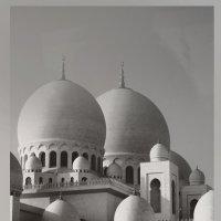 Мечеть в Абу-Даби. :: Валентина Потулова