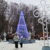 Рождество :: Галина