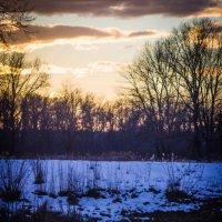 зимний закат на озере :: Ксения смирнова