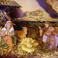 С Рождеством Христовым!!! :: Елена Савчук