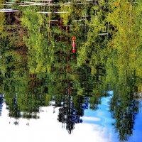 В ожидании поклевки в зеркале озера.. :: Владимир Ильич Батарин