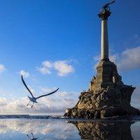 Чайка :: Ксения Репина