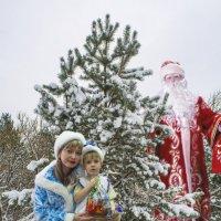 С Новым Годом :: Евгений Чибисов