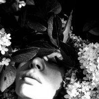 Flower World :: Света Гончарова