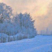 Сиреневые сумерки декабря :: Екатерина Торганская