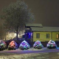 В Рождественскую ночь :: Константин