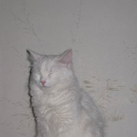 Статуэтка с розовым носиком) :: Татьяна