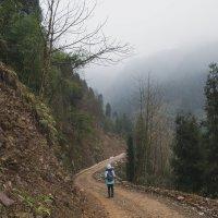 горы Силин. прогулка :: Pavel Shardyko