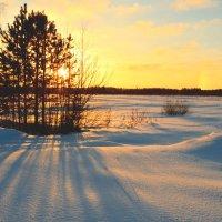 Морозный день :: Екатерина Булыгина