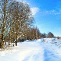 Снег и холод Рождества :: Милешкин Владимир Алексеевич