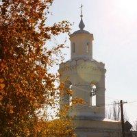 Осень золотая :: Анатолий Шулков