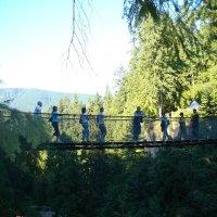 Мост через каньон в парке Капилано. Северный Ванкувер. :: Владимир Смольников