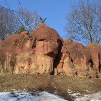 Красные камни, Кисловодск :: Сергей