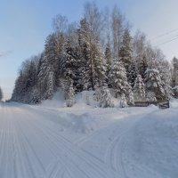 Зима :: Андрей .