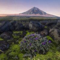 Рассвет над вулканом :: Ершов Андрей