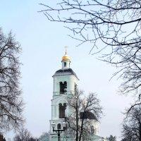 Храм Богоматери Живоносный Источник :: Татьяна Колганова