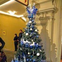 Новогоднее настроение :: татьяна петракова