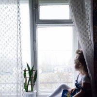 на окне мечтает :: Ольга Штанько