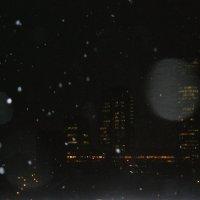 день, когда шел снег :: Sony 2 Sony 2