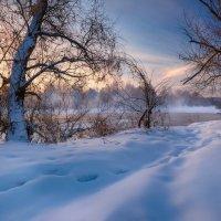 Однажды,в студеную зимнюю пору...© :: Roman Lunin