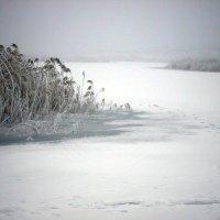 Зимняя река :: mAri