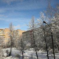 Зима :: Николай Холопов