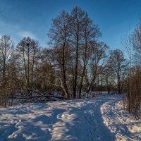 Зимние дороги 2 :: Андрей Дворников