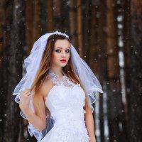 Мороз и нежность :: Виталий Любицкий