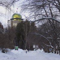 Путь к НГУ :: Дима Пискунов