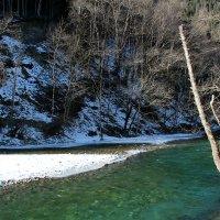 Красивые воды Большой Лабы :: Светлана Попова