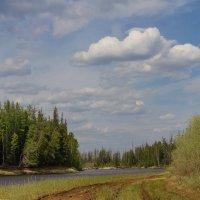 Прогулка по берегу Сибирской реки :: Дмитрий Сиялов
