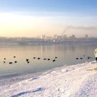 На зимнем берегу реки :: Андрей Шаронов
