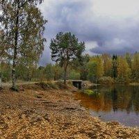 Наша любимая сосна, провожающая нас на рыбалку и встречающая с неё… :: Владимир Ильич Батарин