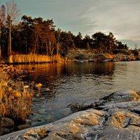 выход к Балтике :: liudmila drake