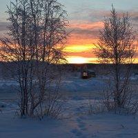 В морозном декабре :: Ольга