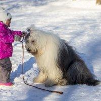 Маня, пойдем гулять! :: Лариса Батурова