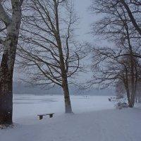 Снежит... :: Galina Dzubina